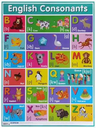 Плакат Айрис-Пресс Английские Согласные Звук и English Consonants