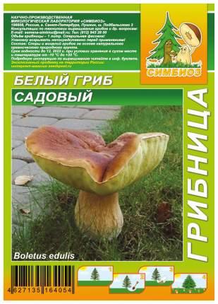 Мицелий грибов Грибница субстрат микоризный Белый гриб Садовый, 1 л Симбиоз