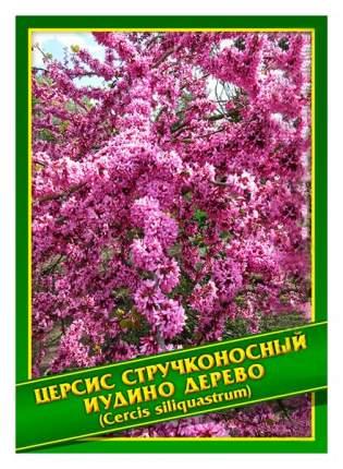 Семена Церсис Стручконосный/Иудино дерево, 0,5 г Симбиоз