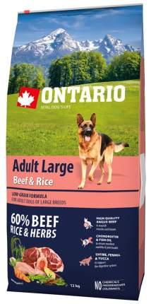 Сухой корм для собак Ontario Adult Large, для крупных пород, говядина и рис, 12кг