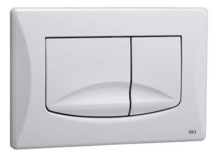 Кнопка смыва OLI River Dual хром матовый (638506)