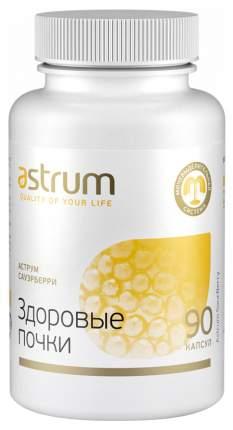 Добавка для здоровья Astrum СауэрБерри: здоровые почки 90 капс. клюква