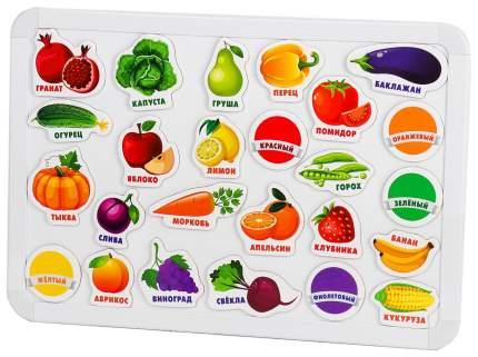 """Развивающие магниты """"Изучаем цвета и овощи - фрукты"""" (набор 25 шт) Лесная мастерская"""