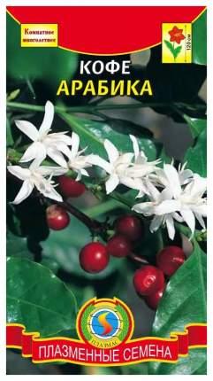 Семена Кофе Арабика, 2 шт, Плазмас