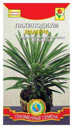 Семена Пахиподиум Ламера, 3 шт, Плазмас