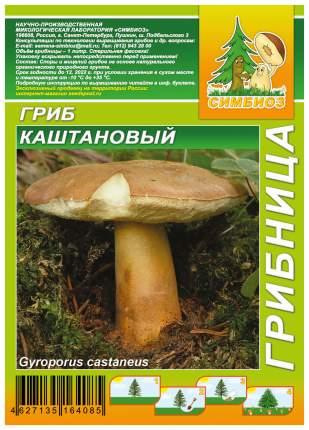 Мицелий грибов Грибница субстрат микоризный Каштановый гриб, 1 л Симбиоз
