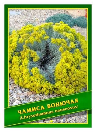 Семена Чамиса Вонючая, 0,1 г Симбиоз
