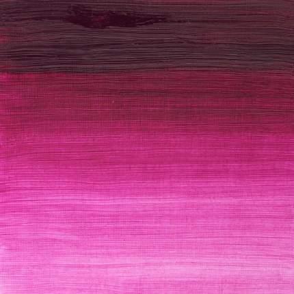Масляная краска Winsor&Newton Winton с