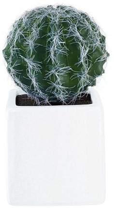 Искусственный кактус ASA Selection Deko 11671000 Белый