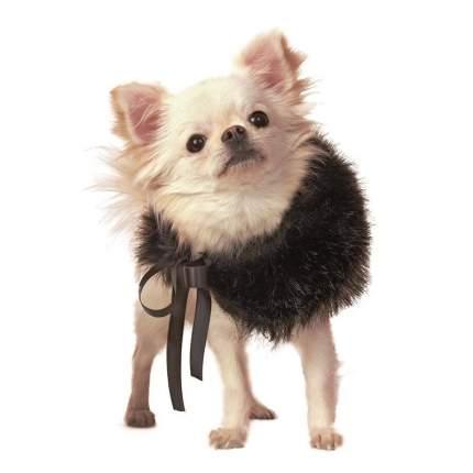 Шарф для собак Charlotte's Dress размер XS, S унисекс, черный