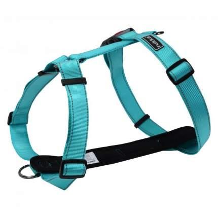 Шлейка для собак RUKKA Form, голубая, 25мм, 45-70см