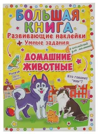 Развивающая книжка С наклейками Домашние Животные Crystal Book