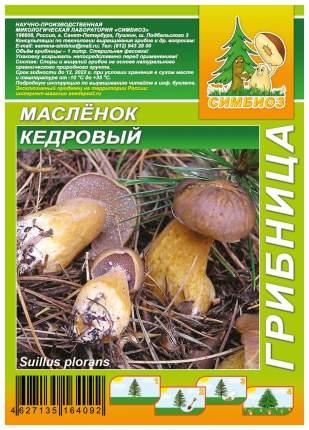 Мицелий грибов Грибница субстрат микоризный Масленок Кедровый, 1 л Симбиоз