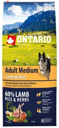 Сухой корм для собак Ontario Adult Medium, для средних пород, ягненок и рис, 12кг