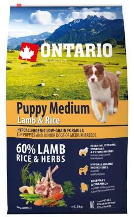 Сухой корм для щенков Ontario Puppy Medium, для средних пород, ягненок и рис, 6,5кг