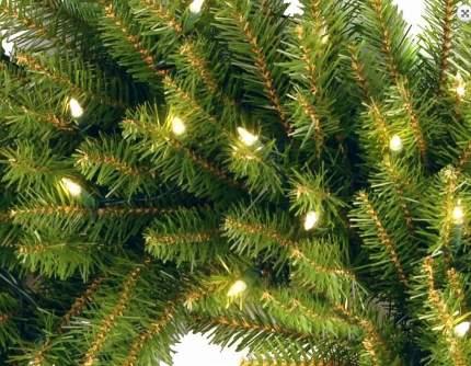 Венок новогодний National Tree Company Данхил 61 см