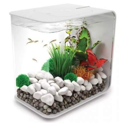 Искусственное растение для аквариума biOrb Кольцо с зеленой травой, малое, 8х8х13см