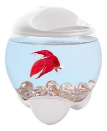 Аквариум для рыб Tetra BETTA BUBBLE для петушков, бесшовный, белый, 1,8 л