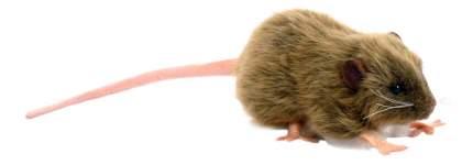 Мягкая игрушка Hansa Крыса Бурая 12 см