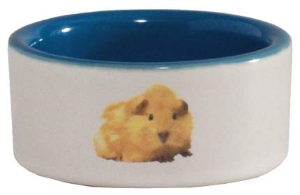 Одинарная миска для грызунов Beeztees, керамика, белый, голубой, 0.12 л