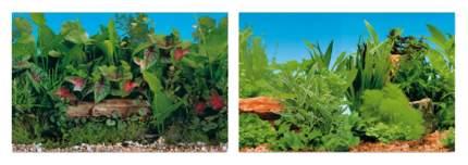 Фон для аквариума ferplast растительность 100x50