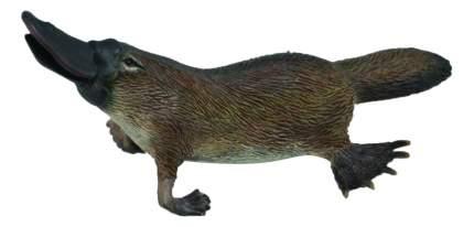 Фигурка животного Collecta Утконос M
