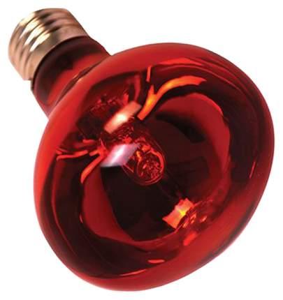Галогенная лампа Reptile One Halogen Heat Lamp Infrared 28Вт
