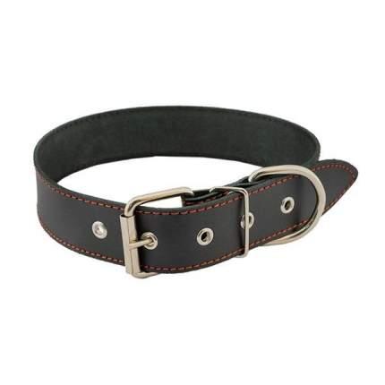 Ошейник Homepet кожаный простой простроченный для собак (35-47см, Черный)