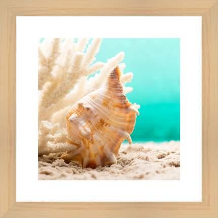"Картина в багете 40х40 см ""Ракушка на пляже"" Ekoramka BE-103-202"