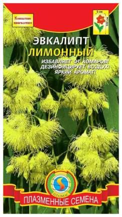 Семена Эвкалипт Лимонный, 3 шт, Плазмас