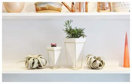 Декоративный предмет Umbra 1004372-524 Белый, золотистый