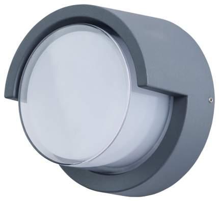 Настенный светильник Arte Lamp A8159AL-1GY