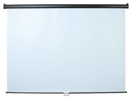 Экран для видеопроектора ScreenMedia Economy P SPM-1102 Белый