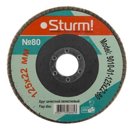 Диск лепестковый для угловых шлифмашин Sturm! 9010-01-125x22-80