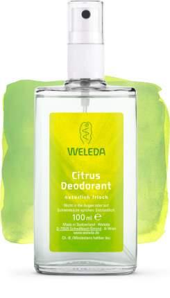 Дезодорант WELEDA Цитрусовый 100 мл
