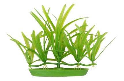 Hagen Растение пластиковое Эхинодорус, 5 см