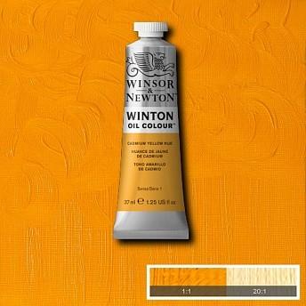 Масляная краска Winsor&Newton Winton желтый кадмий 37 мл