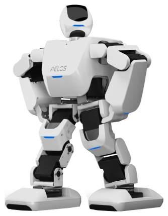 Интерактивный робот Leju Aelos 1 PRO