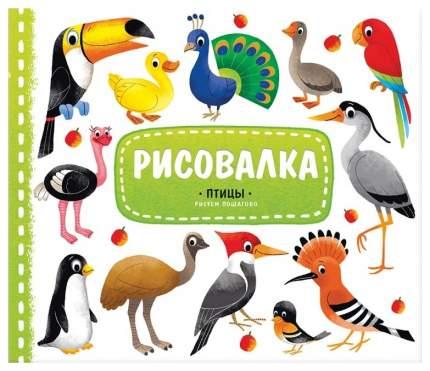 Книжка-рисовалка с наклейками ГеоДом «Птицы. Рисуем пошагово»