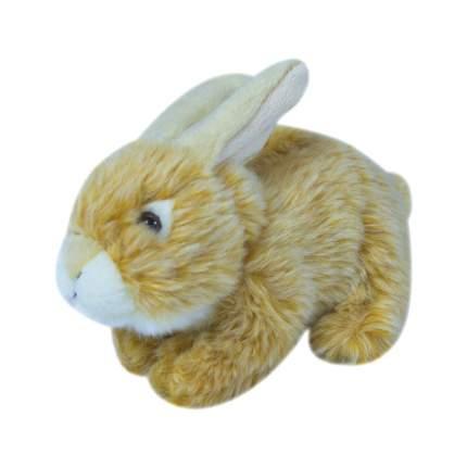 Мягкая игрушка Teddykompaniet заяц, рыжий, 19 см,7124