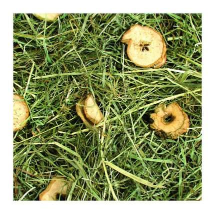 Сено для грызунов Jr Farm луговое с яблоками 0.5 кг 1 шт