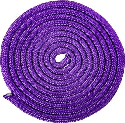 Скакалка для художественной гимнастики Amely RGJ-104, 3м, фиолетовый