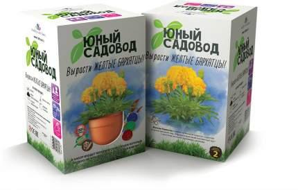 Набор для выращивания Юный садовод Вырасти желтые бархатцы 408 бархатцы