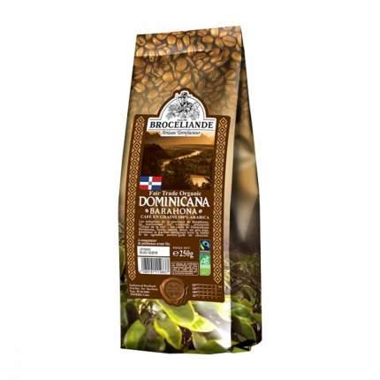 Кофе Broceliande Dominicana Barahona в зернах 250 г