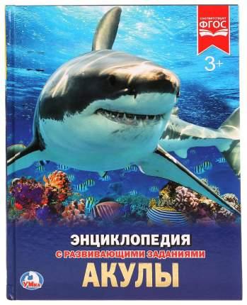 Книга Умка Алексеев В. Акулы