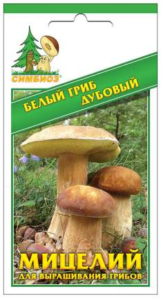 Мицелий грибов Зерновой Белый гриб Дубовый, 30 мл Симбиоз