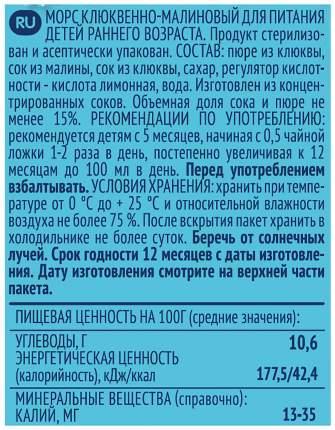 Морс ФрутоНяня Снежная сказка клюквенно-малиновый с 5 мес 200 мл