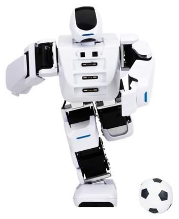 Интерактивный робот Leju Aelos 1 EDU