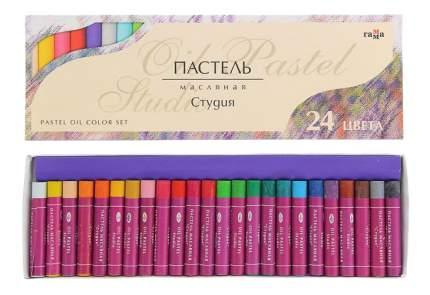 Художественные краски Гамма Студия 24 цвета
