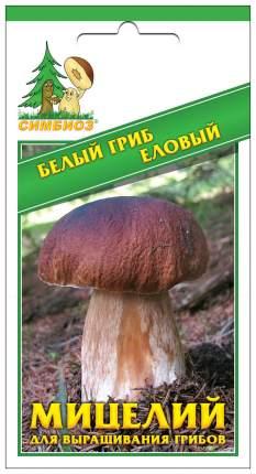 Мицелий грибов Зерновой Белый гриб Еловый, 30 мл Симбиоз